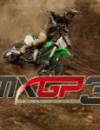 Vollständige Liste der MXGP 3 2 Stroke Bikes