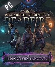 Pillars of Eternity 2 Deadfire The Forgotten Sanctum