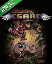 The Binding of Isaac Afterbirth