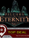 Pillars of Eternity | TOP DEAL!