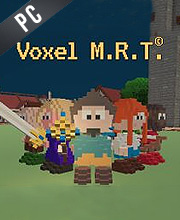 Voxel M.R.T.