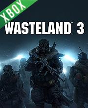 Wasteland 3