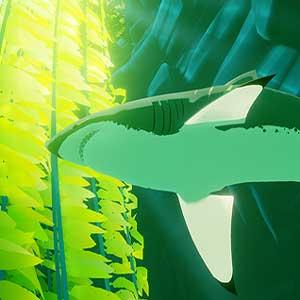 Shark in der Mitte des Ozeans