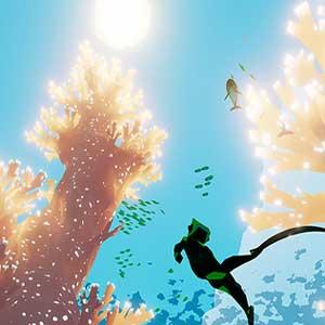 Große Korallenriffe