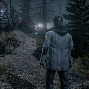 Alan wake Wald