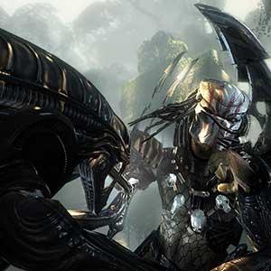 Aliens VS Predator Duell