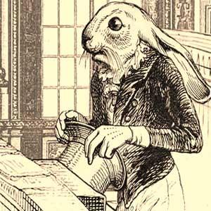 Barron das Kaninchen