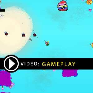 Birdcakes Gameplay Video