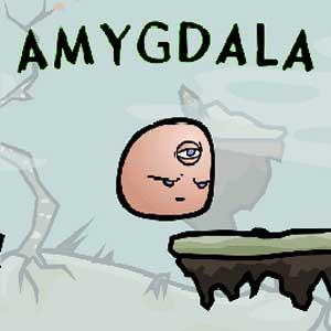 Amygdala Key Kaufen Preisvergleich