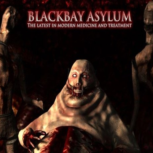 Blackbay Asylum Key Kaufen Preisvergleich