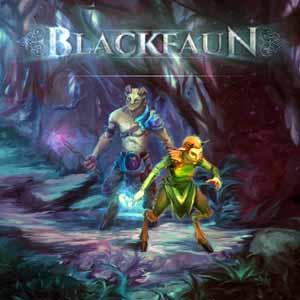 Blackfaun Key Kaufen Preisvergleich
