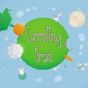 Carrotting Brain Key Kaufen Preisvergleich