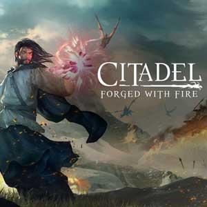 Citadel Forged with Fire Key kaufen Preisvergleich