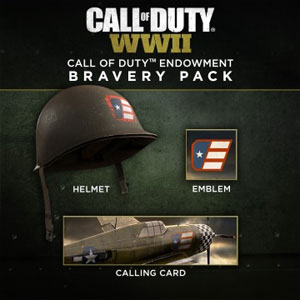 COD WW2 Call of Duty Endowment Bravery Pack