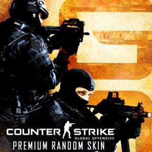 CSGO 1 Premium Random Skin