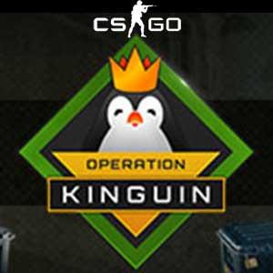 CSGO Operation Kinguin Case Key Kaufen Preisvergleich