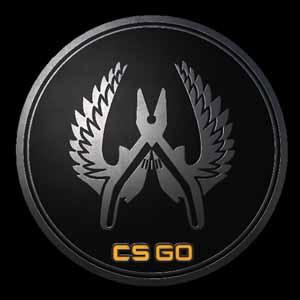 CSGO Series 1 Guardian Collectible Pin Key Kaufen Preisvergleich