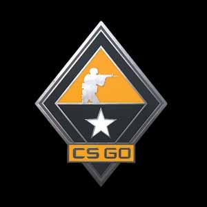 CSGO Series 1 Tactics Collectible Pin Key Kaufen Preisvergleich