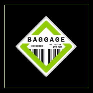 CSGO Series 2 Baggage Collectible Pin Key Kaufen Preisvergleich