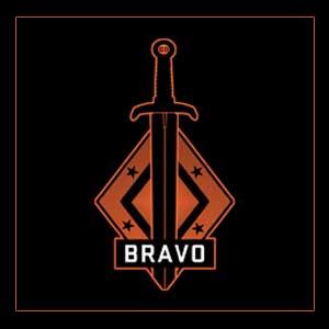 CSGO Series 2 Bravo Collectible Pin Key Kaufen Preisvergleich