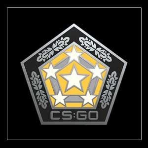 CSGO Series 2 Chroma Collectible Pin Key Kaufen Preisvergleich