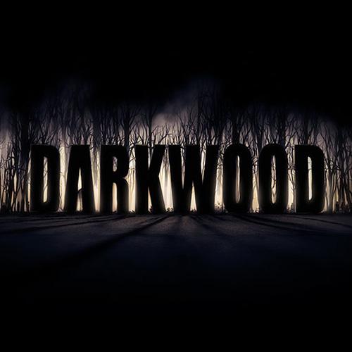 Darkwood Key Kaufen Preisvergleich