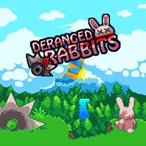Deranged Rabbits Key Kaufen Preisvergleich
