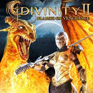 Divinity 2 Flames Of Vengeance Key Kaufen Preisvergleich