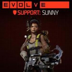 Evolve Sunny (Fourth Support Hunter) Key Kaufen Preisvergleich