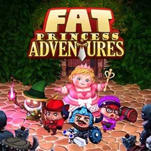 Fat Princess Adventures PS4 Code Kaufen Preisvergleich