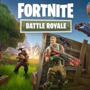 Fortnite Battle Royale Starter Pack Key Kaufen Preisvergleich