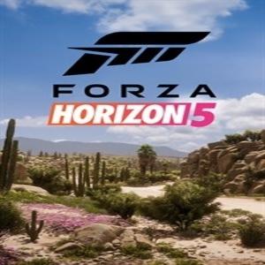 Forza Horizon 5 Key kaufen Preisvergleich