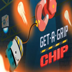 Get-A-Grip Chip