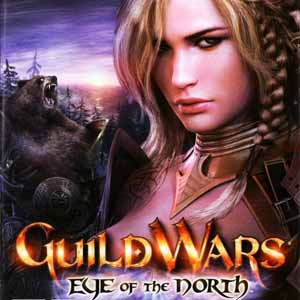 Guild Wars Eye Of The North Key Kaufen Preisvergleich