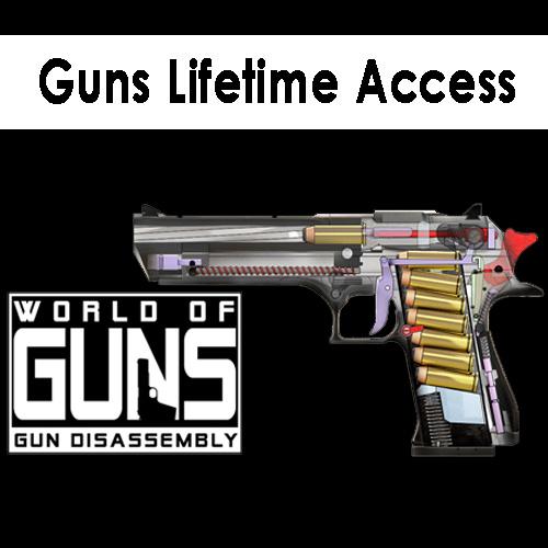 Guns Lifetime Access Key Kaufen Preisvergleich