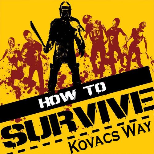 How To Survive Kovac's Way Key Kaufen Preisvergleich