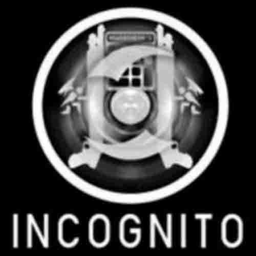 Incognito Key Kaufen Preisvergleich