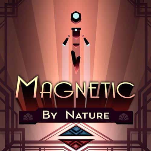 Magnetic By Nature Key Kaufen Preisvergleich