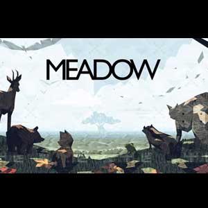 Meadow Key Kaufen Preisvergleich