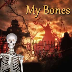 My Bones Key Kaufen Preisvergleich
