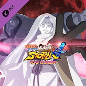 NARUTO STORM 4 ROAD TO BORUTO NEXT GENERATIONS Pack