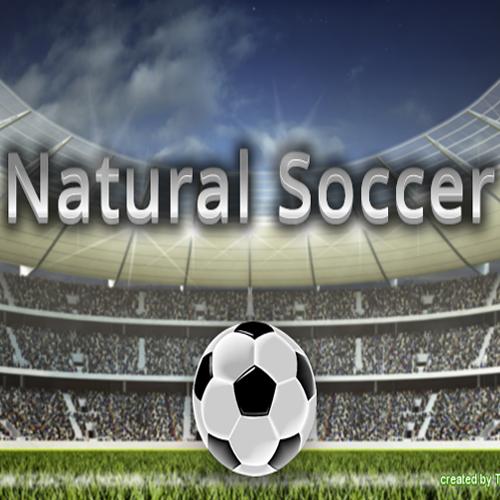 Natural Soccer Key Kaufen Preisvergleich