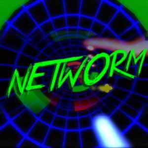 Networm Key Kaufen Preisvergleich