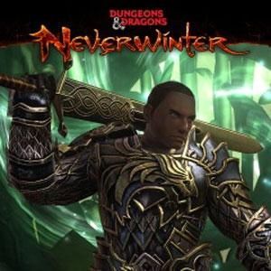 Kaufe Neverwinter Heirloom Weapon Pack PS4 Preisvergleich