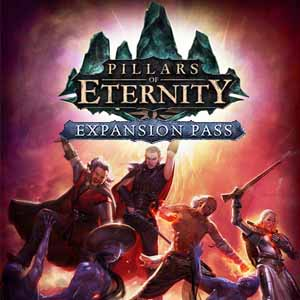 Pillars of Eternity Expansion Pass Key Kaufen Preisvergleich