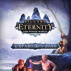 Pillars of Eternity The White March Expansion Pass Key Kaufen Preisvergleich