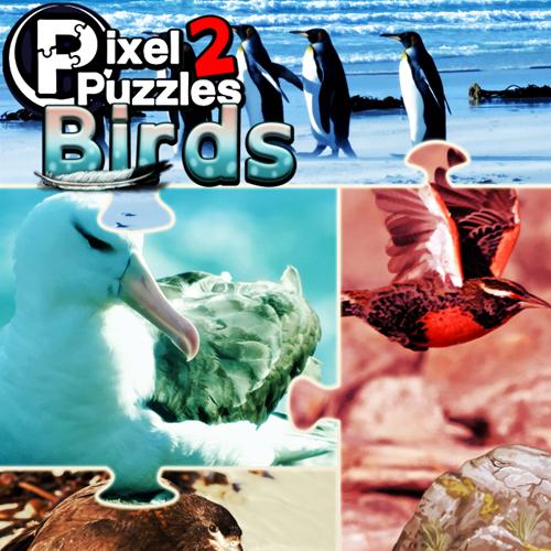 Pixel Puzzles 2 Birds Key Kaufen Preisvergleich