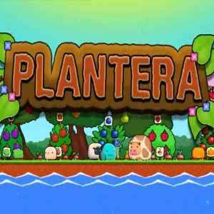 Plantera Key Kaufen Preisvergleich