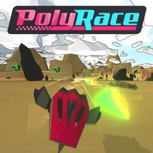 PolyRace Key Kaufen Preisvergleich