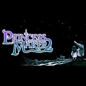 Princess Maker 2 Refine Key Kaufen Preisvergleich